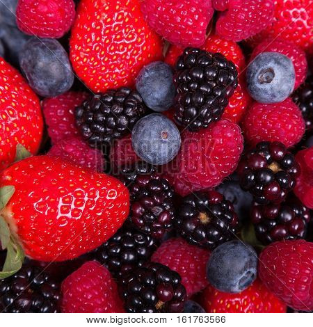 Mixed ripe sweet berries background. Blueberries raspberries strawberries and blackberries. Rich colours. With space for text.