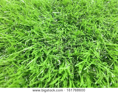 Artificial green grass turf for texture and background