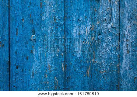 Old blue painted wooden wall. Background texture