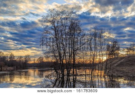 Spring Landscape, Submerged Trees And Beach