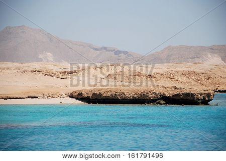 Egypt. Island the Tyrant. Red sea.Charm-ale-sheikh.marine Paar