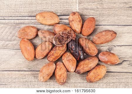 Cocoa beans whole and cut on wooden plank.