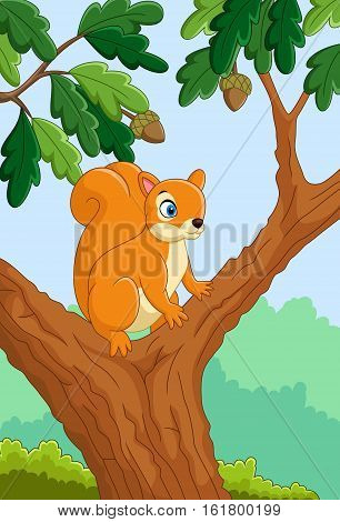 Vector illustration of Cartoon funny squirrel on the tree