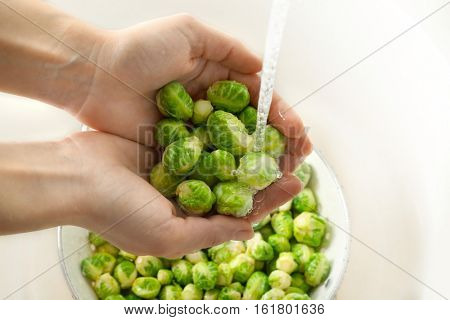 Female hands washing Brussels sprouts, closeup