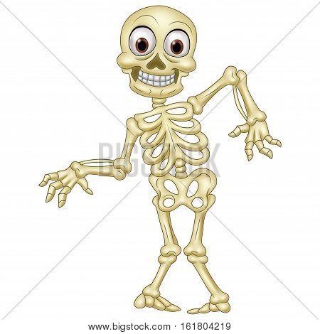 Vector illustration of Halloween skeleton on white background