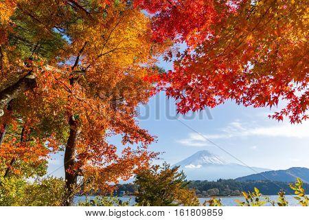 Mt. Fuji in Kawaguchi Lake