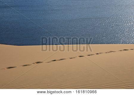 Footprints on the sand dunes on the background of blue lake. Mui Ne Vietnam
