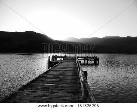A mistical black and white photo of a wooden pier in New Zealand