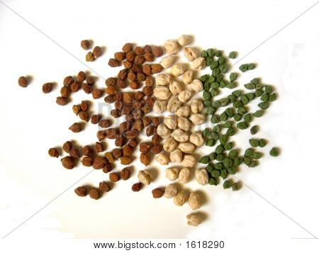 Tricolor Chick Peas Scattered