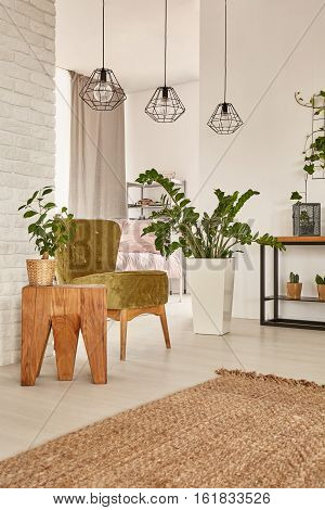 Interior With Decorative Houseplants