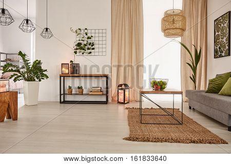Earth's Tones Home Interior