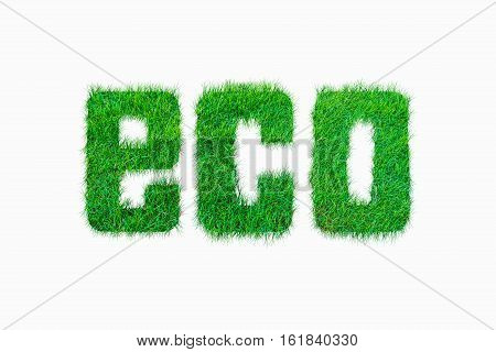 Nature Alphabet Letter  Eco From Green Grass Seamless Texture