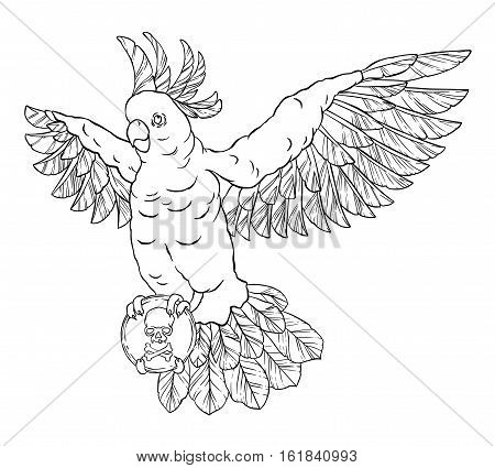 Pirate parrot in flight with outstretched wings and a black mark in his paws. Cockatoo. Vector illustration isolated on white background. Coloring page