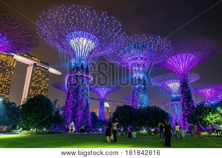 Singapore - October 23 2016: Colorful of lighting show in Singapore Cityscape on twilight scene. Lighting illuminated Supertree Grove at Gardens by the Bay in Singapore.