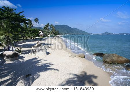 popular tourist resort lami beach on koh samui island in the gulf of thailand