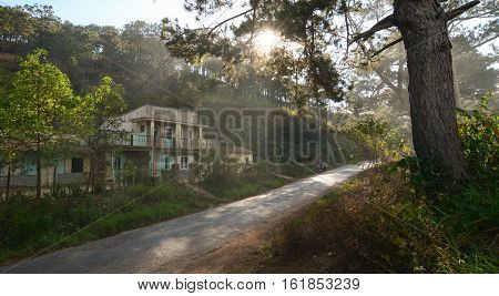 Mountain Road In Dalat, Vietnam