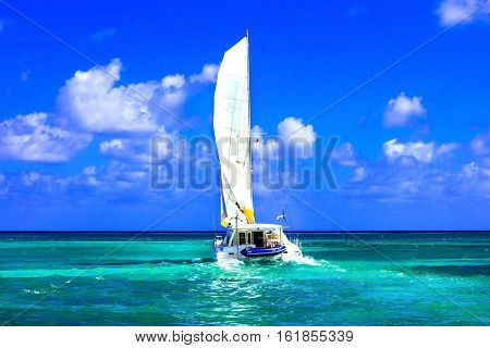 Sailing catamaran in open sea in sunny weather