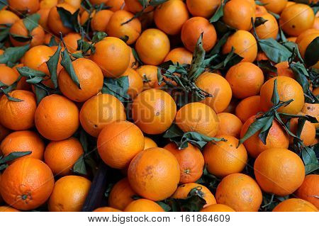 Ripe bright tangerines on the market close up