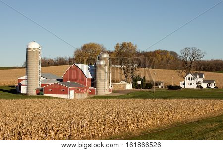 A small dairy farm with crops and blue sky background.