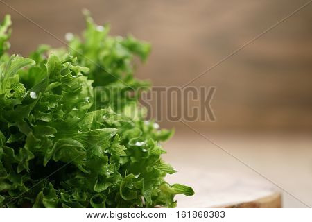 frisee lettuce close up leaves on wooden table, shallow focus