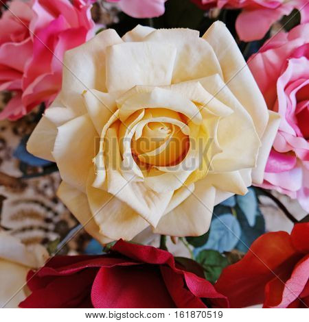 colorful pale white fake rose flower closeup