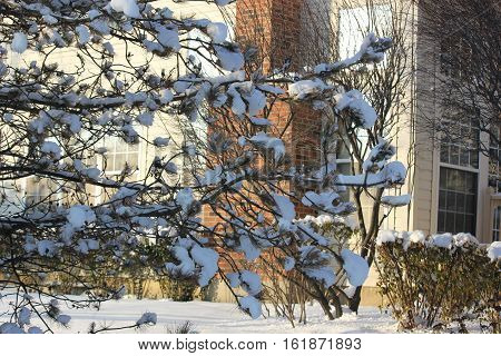Beautiful white snow and town home in background