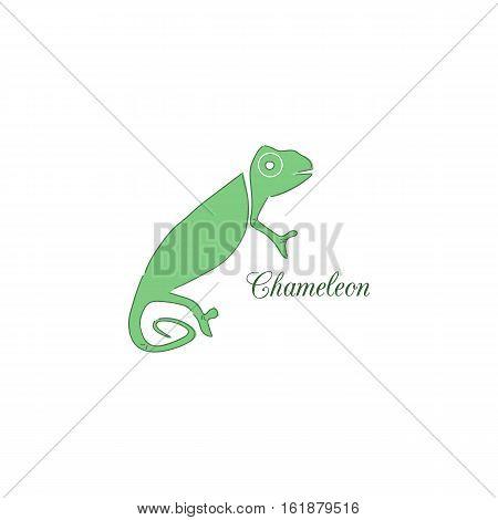 Chameleon logo. Identity design template. Vector illustration for your company.