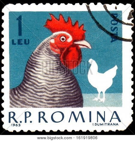 ROMANIA - CIRCA 1963: Postage stamp printed in Romania shows hen, a series of poultry