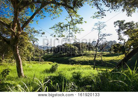 Beautiful nature in Chiapas region, near San Cristobal, Mexico.