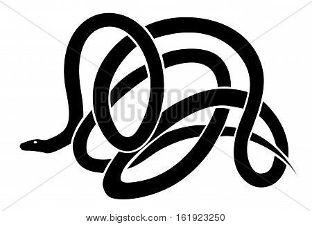 Reptile snake or serpent. Black vector isolated on white background.