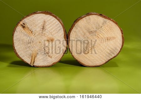 Two pine saw cuts with bark are standing beside on rib on green background.