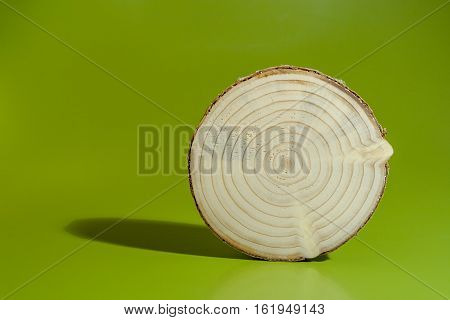 One pine saw cut is on green background. Clearly visible core and annual rings.