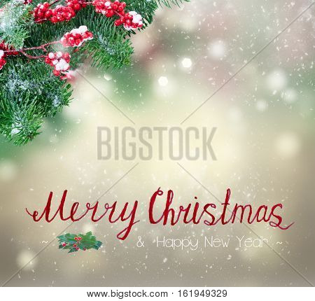 twig with red berries and evergreen fir tree twig over gray bokeh background with snow drops and merry christmas greetings