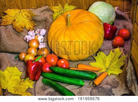 On burlap lined with a variety of vegetables. In the centr a large yellow pumpkin.