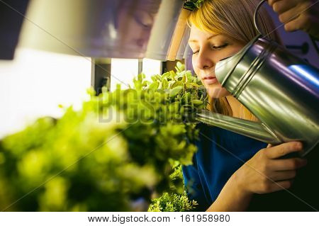 Woman Pours From A Watering Green Plants In Pots In The Room, Hanging From The Wall With Lighting In