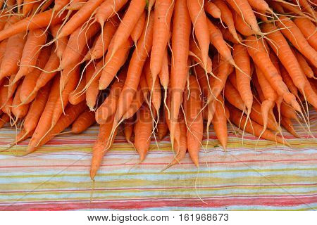 Freshly picked bunches of carrots at farmer's market