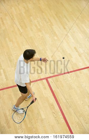 Squash player in action on squash court, back view.