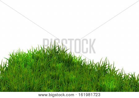 Green grass isolated on blue sky background. Eps10.