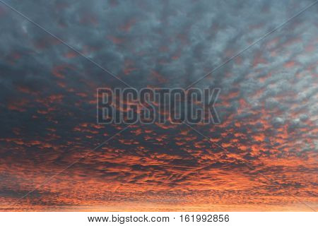 Sky With Tiny Fleecy Clouds And Sunset Afterglow