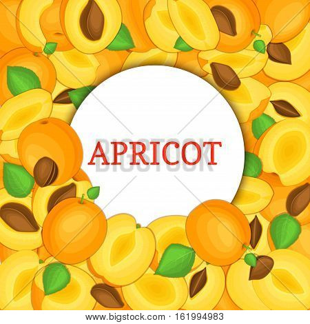 Round white frame on ripe apricot background. Vector card illustration. Delicious fresh and juicy apricot whole, peeled piece of half slice leaves seed. appetizing looking for packaging design of food