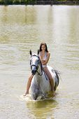 equestrian on horseback riding through water poster