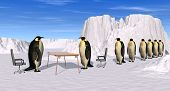 a 3d rendering of a penguins recruiting interview poster