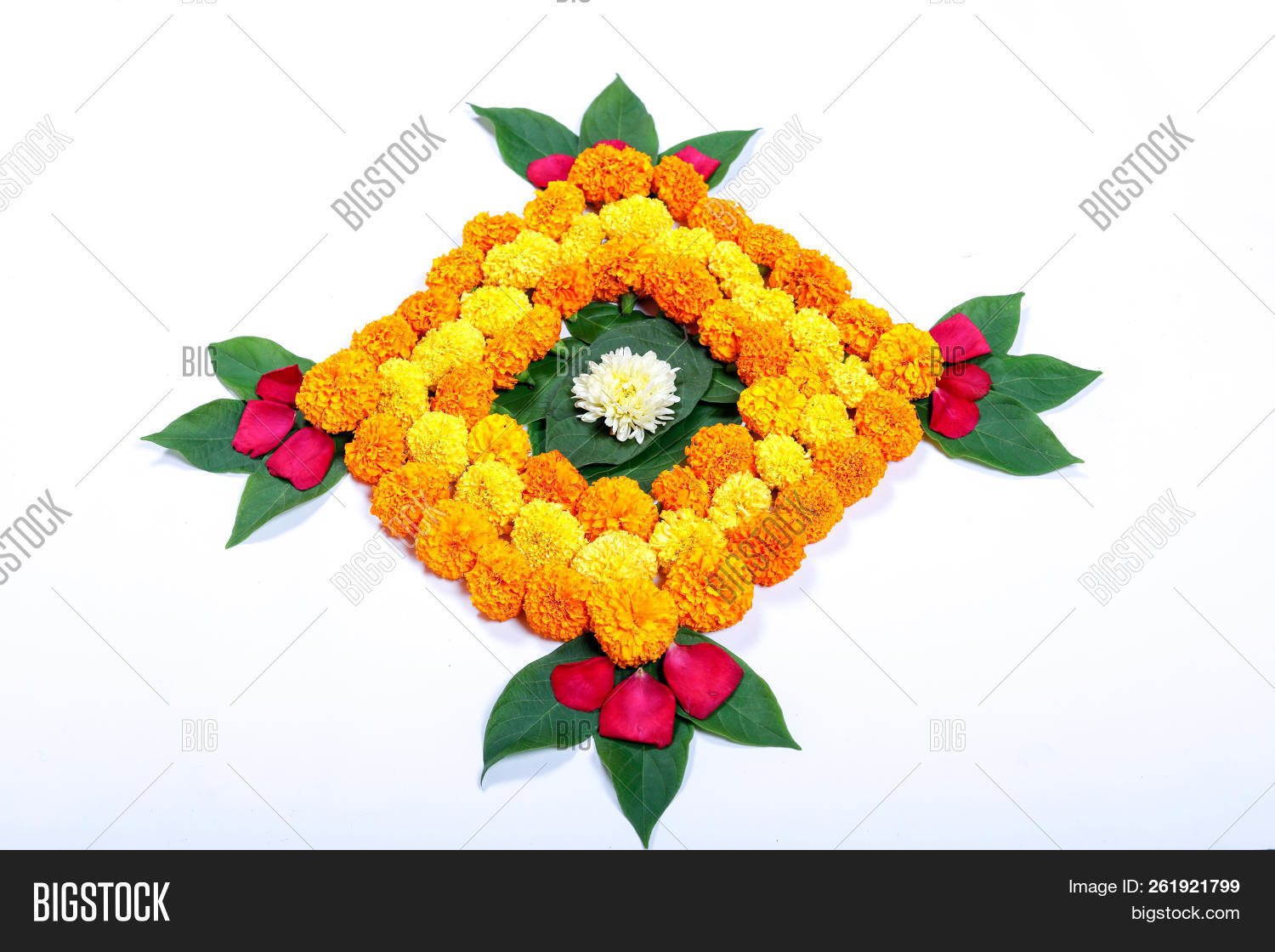 Marigold Flower Image Photo Free Trial Bigstock