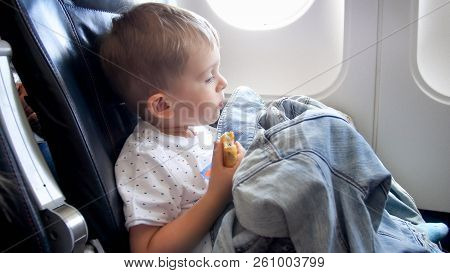 Portrait Of Cute Toddler Boy Sitting In Airplane And Eating Bun