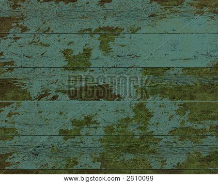 Moss Background2