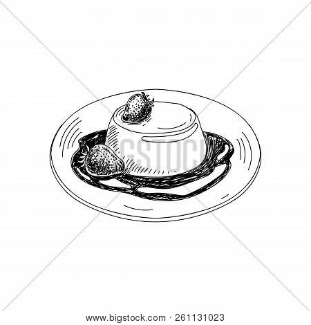 Vector Hand Drawn Panna Cotta. Dishes Of Italian Cuisine. Detailed Retro Style Illustration. Vintage