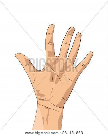 Men's And Women S Hands With Gestures.