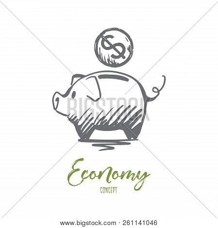 Economy, Financial, Bank, Coin Concept. Hand Drawn Pig And Coin With Symbol Of Dollar Concept Sketch