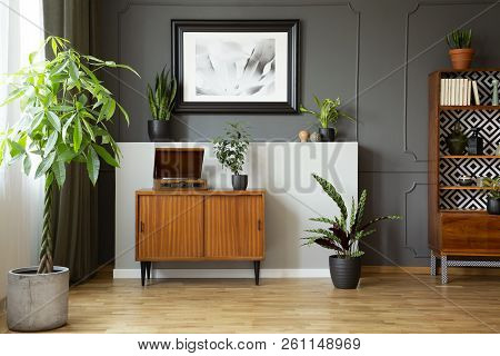Vintage Cupboard With Gramophone In Real Photo Of Dark Living Room Interior With Molding And Poster