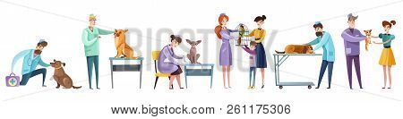 Set Of Vet Doctors During Pets Examination And Owners Of Domestic Animal Isolated Flat Vector Illust
